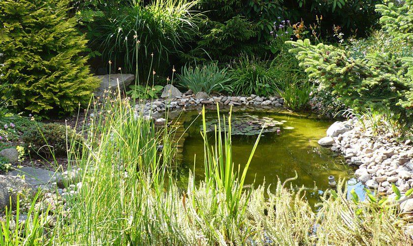 Eysser Garten Und Landschaftsbau